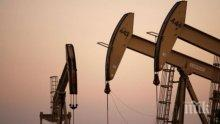 """Цените на петрола паднаха заради американския ураган """"Харви"""""""