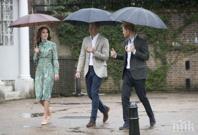 Уилям, Хари и Кейт се поклониха в памет на принцеса Даяна (СНИМКИ)