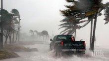 """Ураганът """"Ирма"""" отслабна до четвърта категория"""