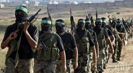 """""""Хизбула"""" скочи срещу Израел: Готови сме на всяка атака или глупост"""