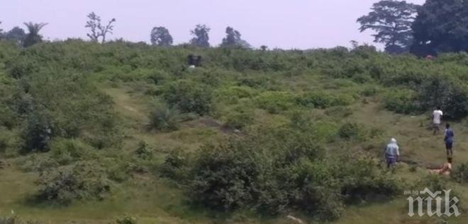 Ужас! Разярен слон стъпка мъж в Индия (ВИДЕО)