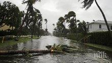 "Стихия! Втора жертва на урагана ""Ирма"" в щата Джорджия"