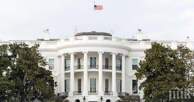 Белият дом назначи 28-годишната Хоуп Хикс за шеф на комуникациите