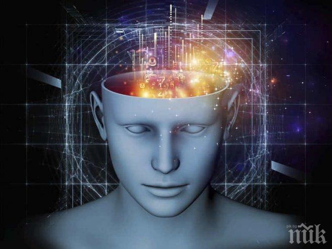 Бъг в мозъка! Тези 12 трика са пълно заблуждение
