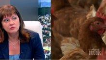 ГОРЕЩО РАЗКРИТИЕ! Ето коя ферма излюпи българските яйца с фипронил