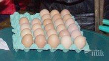 Лидл България с официален коментар по повод открит фипронил в яйца