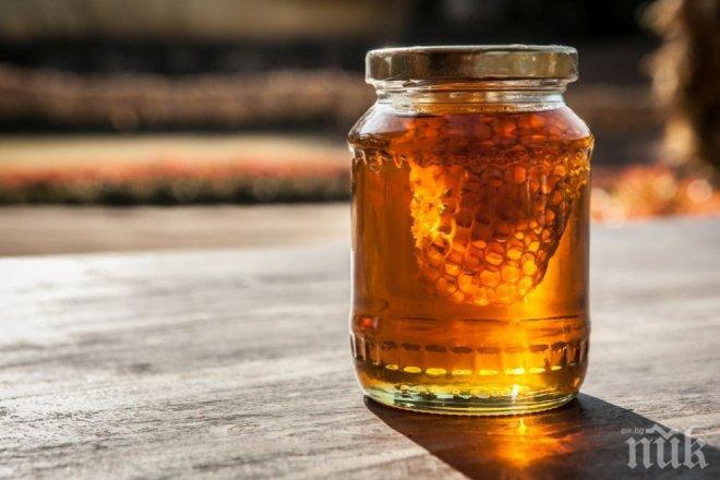 ПАНАЦЕЯ! Ето какво лекува медът! Заболяванията са над 500