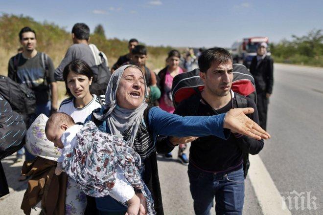 МВР разкри колко точно са бежанците в България