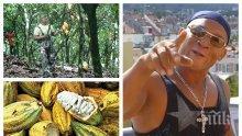 """ЕКСКЛУЗИВНО В ПИК TV! Кофе Бабоне с уникално предложение към родните политици! Ето как световни гиганти за храни могат да станат зависими от България - само в """"Жълтите новини"""""""