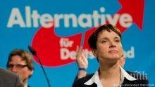 """""""Алтернатива за Германия""""може да стане третата най-голяма партия в Бундестага"""
