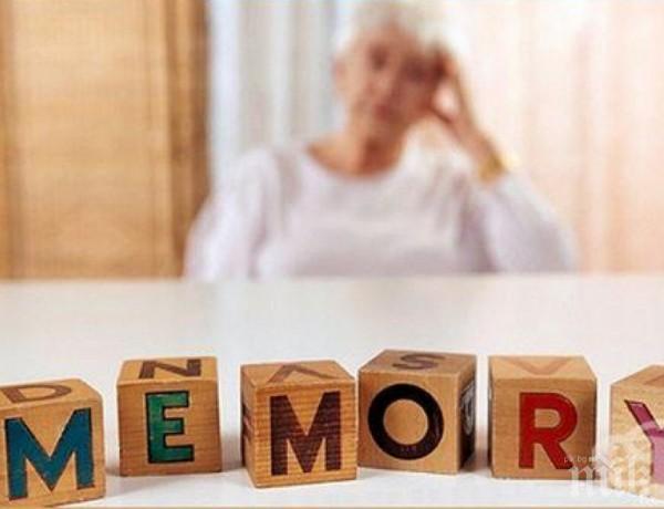 ЕВРИКА! Откриха ключ към лечението на Алцхаймер