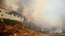 СТИХИЯ! Голям пожар в Гърция! Горят дървета на пътя за Офринио