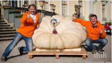 Най-голямата тиква в Германия тежи 792,5 килограма