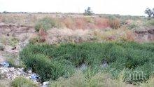 ГОЛЯМА ОПАСНОСТ! Утайките от Пловдив може да отровят река Марица