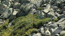 УНИКАЛНО! Спелеолози откриха праисторическо светилище край Велико Търново
