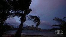 """Стихия! Властите в Ню Орлиънс обявиха извънредно положение заради урагана """"Нейт"""""""