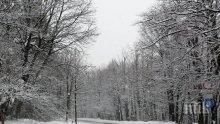 ПЪЛЕН ОБРАТ! Зимата идва! Студ, дъжд и сняг ни връхлитат в събота