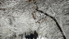 ЛЕДЕНА АНОМАЛИЯ ОТ ТАЗИ НОЩ! Зимата връхлита, иде първият сняг, градусите падат с 20 наведнъж!