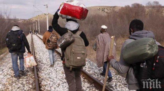 Турската жандармерия спипа над 50 мигранти край Къркларели, тръгнали към България