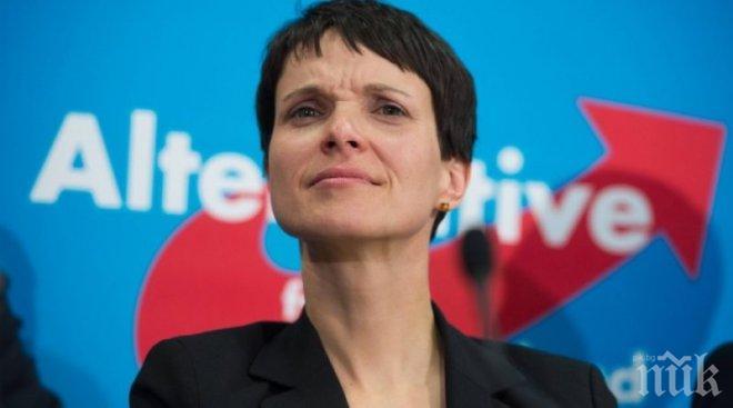 """""""Алтернатива за Германия"""" ще съди бившия лидер на партията Фрауке Петри"""