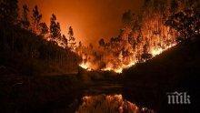 Стихия! Близо осем хиляди души са се включили в борбата с огъня в Калифорния