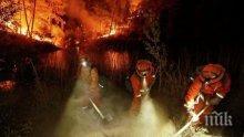 ЕКСКЛУЗИВНО! Българка за огнения ад в Калифорния: Градът е като след апокалипсис! Жертвите в Напа са 21, 150 се водят изчезнали
