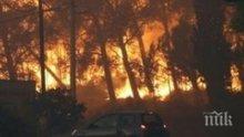 Стихия! Най-малко 1 500 сгради са разрушени от пожарите в Калифорния