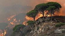 Борбата с пожарите в Калифорния продължава