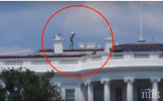 Това ВИДЕО взриви нета! Извънземни в Белия дом или измама?! (ВИДЕО)