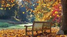 ЗЛАТНАТА ЕСЕН ПРОДЪЛЖАВА ДА НИ РАДВА! Слънчево и топло за октомври с максимални температури между 21° и 26°