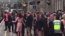 Кейт Мидълтън се впусна в танц с мечето Падингтън (ВИДЕО)