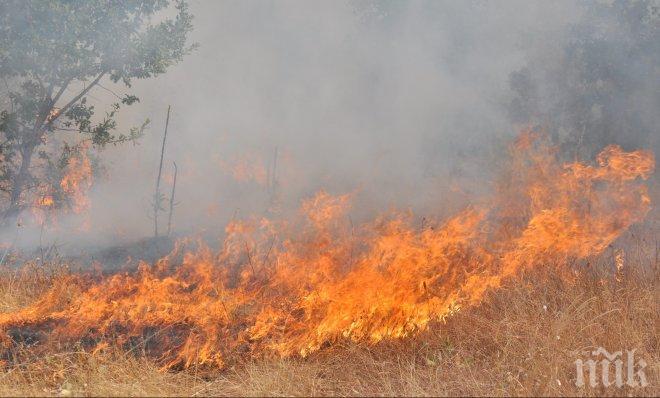 ВАЖНО! Пожар до пътя Самоков – Дупница, карайте внимателно