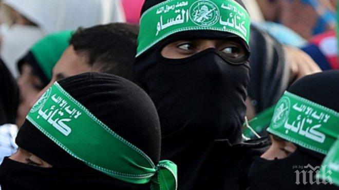 """Бойци на """"Хизбула"""" са влезли в Германия като бежанци"""