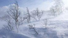 БЕДСТВИЕ! Заради ураганите - иде зима с много сняг и виелици!