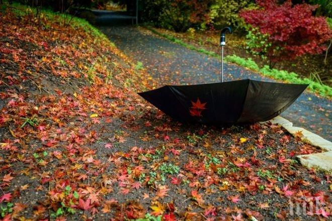 ИДВА КРАЯТ НА ЗЛАТНАТА ЕСЕН! До неделя ще бъде топло, но в началото на другата седмица идват дъжд и студ