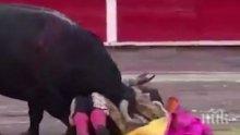 КЪРВАВА КОРИДА! Разярен бик прониза с рога си гърлото на матадор (ВИДЕО 18+)
