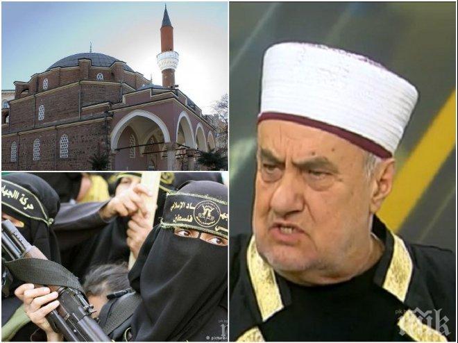 ШОКИРАЩО! Бившият главен мюфтия със страшни разкрития: Радикален ислям може да се проповядва в над 600 джамии у нас