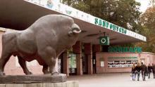 Фандъкова обяви, че ремонтираме зоопарка, за да вземем нови животни