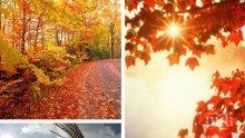 Златна есен! Слънчево с температури до 17 градуса днес