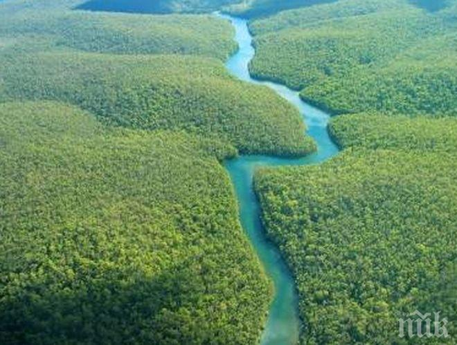 Щастлива развръзка! В бразилските джунгли откриха американско семейство, изчезнало след нападение на пирати  по Амазонка