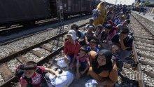 Подадени са 370 молби за закрила от деца-бежанци без родители
