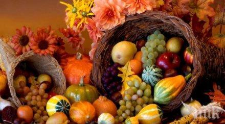 полезно есенните храни помагат отслабване правят щастливи