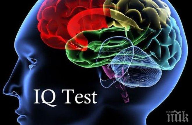 ВНИМАНИЕ! Нова измама в мрежата - тест за интелигентност за 6 лева