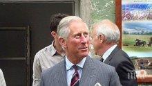 СКАНДАЛ! Принц Чарлз: Еврейските имигранти от Европа са причината за размириците в Близкия изток