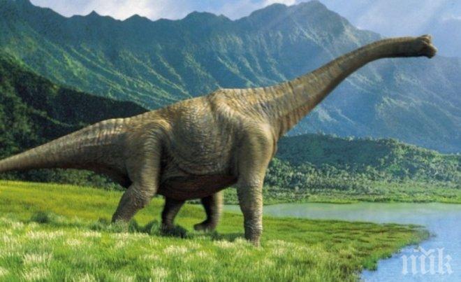 ПРОБИВ! Откриха какво е убило динозаврите - дали ще се повтори с човечеството?
