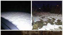 СУТРЕШНА ФЕЕРИЯ! Първият сняг изненада софиянци (СНИМКИ)