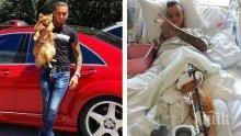 КАТО КОТКИТЕ! 9-те живота на Джино: Брадърът е с 20 операции след побой и катастрофа! Хирурзи възстановявали главата му по снимка