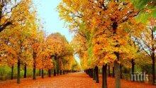 ДОБРА ПРОГНОЗА! След първия сняг - топла есен до Никулден