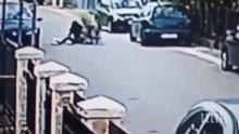 Улично куче спаси жена от грабител в Черна гора (ВИДЕО)
