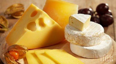 млечните продукти пазара български